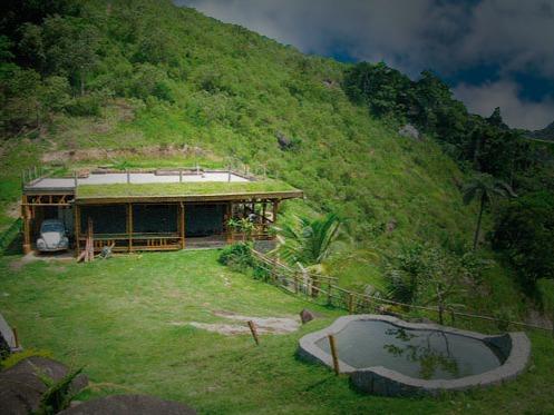 En altura techos verdes y jardines verticales en c rdoba Techos verdes y jardines verticales