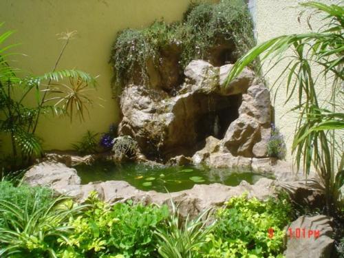 Construcciones en seco y servicios varios en la plata for Cascadas de jardin artificiales